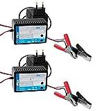 2 x Batterietrainer 12V Batterie Erhaltungsladegerät...