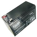 Blei-Gel/Bleibatterie Fiamm FG 20722 PB 12V/7200mAh