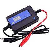 CPTDCL 400 Ah Intelligent Auto Pulse Batterie...