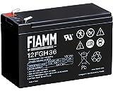 FIAMM ic-12fgh36–Blei-Akku 12V 9AH (Faston...