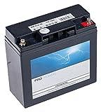 Ratioparts 101, 842 Starterbatterie für Rasentraktoren...