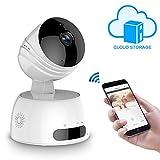 Wireless IP Kamera, ROXTAK HD Überwachungskamera mit...