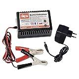 DEMA KFZ Batterietrainer für 12 Volt Batterien