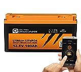 LIONTRON LiFePO4 12V 100Ah Lithium Batterie mit Smart...