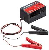 HP-Autozubehör 20817 Batterietrainer 12V 500mA