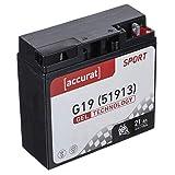 Accurat Motorradbatterie G19 21Ah 175A 12V Gel...