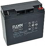 Original FIAMM Akku 12V 18Ah Batterie Akku FG21703 /...
