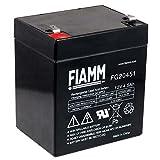 Fiamm Bleiakku FG20451, 12V, Lead-Acid