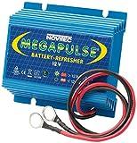 Megapulse 655000032 Batteriepulser für 12 Volt...